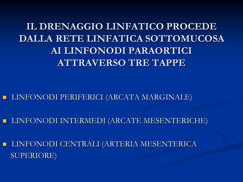 IL DRENAGGIO LINFATICO PROCEDE DALLA RETE LINFATICA SOTTOMUCOSA AI LINFONODI PARAORTICI ATTRAVERSO TRE TAPPE