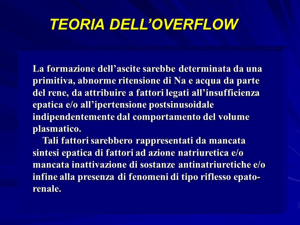 TEORIA DELL'OVERFLOW