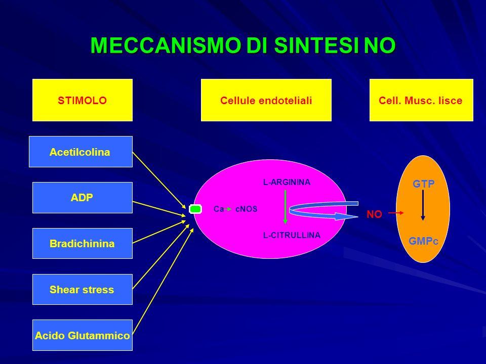 MECCANISMO DI SINTESI NO