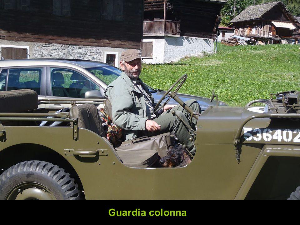 Guardia colonna