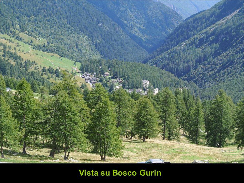 Vista su Bosco Gurin