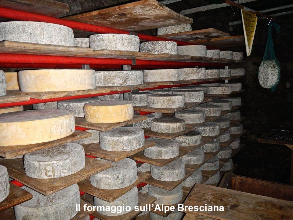 Il formaggio sull'Alpe Bresciana