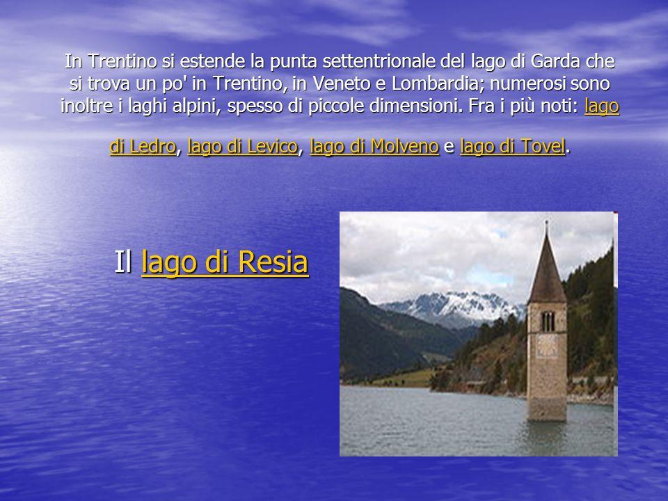 In Trentino si estende la punta settentrionale del lago di Garda che si trova un po in Trentino, in Veneto e Lombardia; numerosi sono inoltre i laghi alpini, spesso di piccole dimensioni. Fra i più noti: lago di Ledro, lago di Levico, lago di Molveno e lago di Tovel.