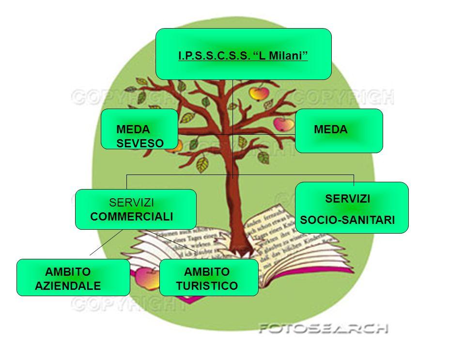 I.P.S.S.C.S.S. L Milani MEDA SEVESO. MEDA. SERVIZI. SOCIO-SANITARI. SERVIZI COMMERCIALI. AMBITO AZIENDALE.