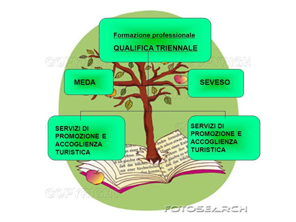 QUALIFICA TRIENNALE MEDA SEVESO Formazione professionale