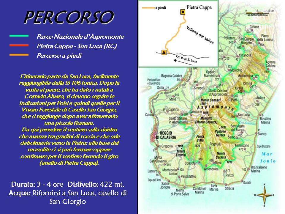 PERCORSO Parco Nazionale d'Aspromonte. Pietra Cappa - San Luca (RC) Percorso a piedi.