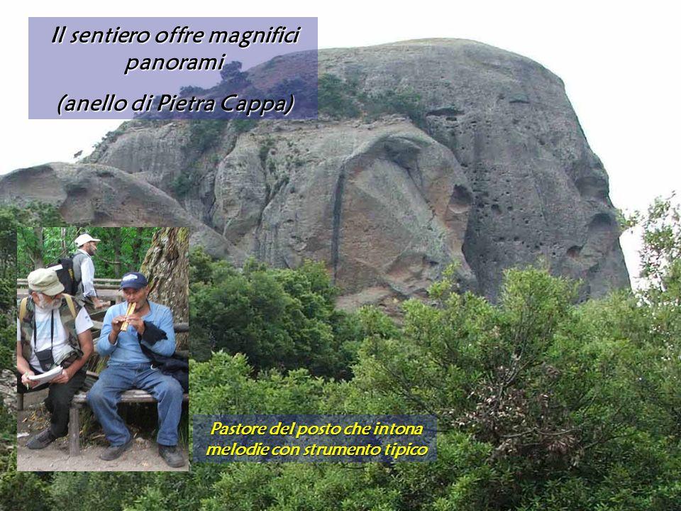 Il sentiero offre magnifici panorami (anello di Pietra Cappa)