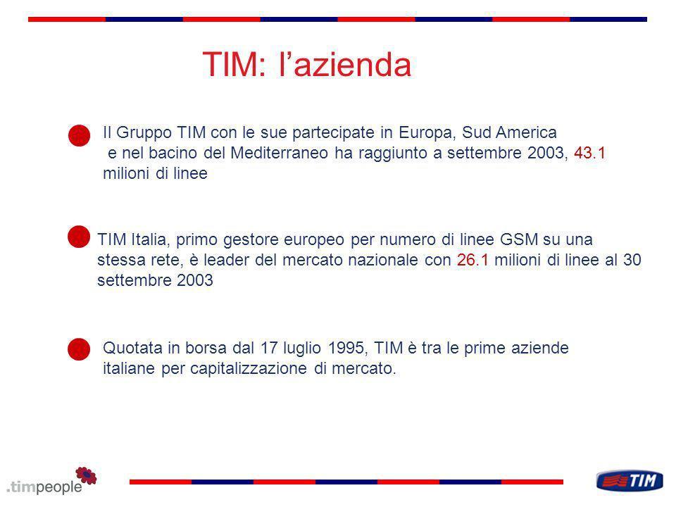 TIM: l'azienda Il Gruppo TIM con le sue partecipate in Europa, Sud America.