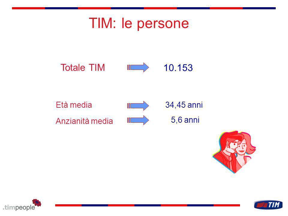 TIM: le persone Totale TIM 10.153 Età media 34,45 anni Anzianità media