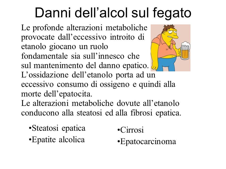 Danni dell'alcol sul fegato