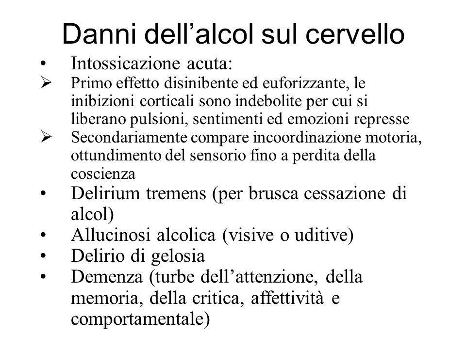 Danni dell'alcol sul cervello