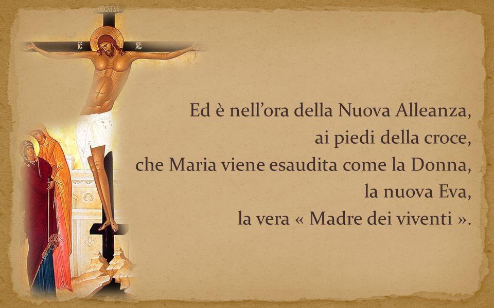 Ed è nell'ora della Nuova Alleanza, ai piedi della croce, che Maria viene esaudita come la Donna, la nuova Eva, la vera « Madre dei viventi ».