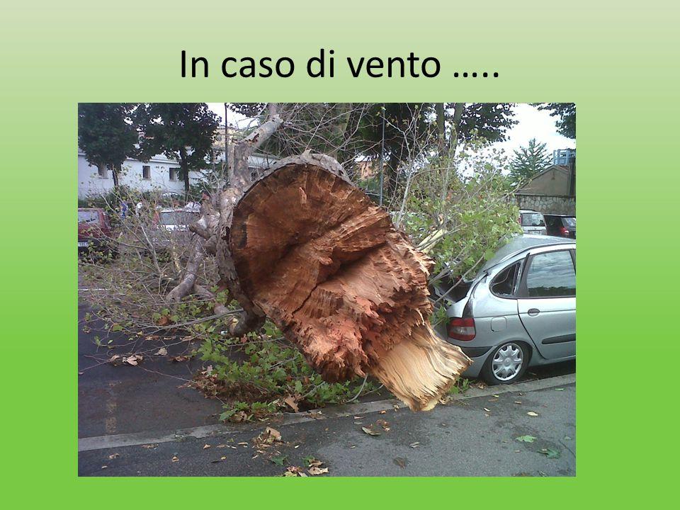 In caso di vento …..