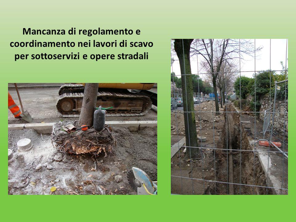 Mancanza di regolamento e coordinamento nei lavori di scavo per sottoservizi e opere stradali