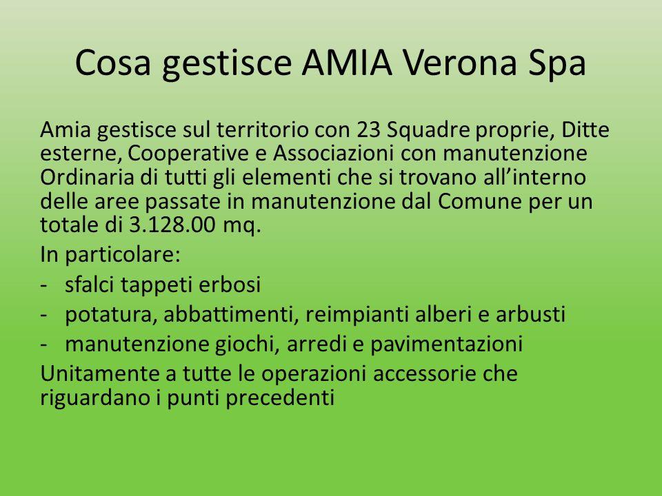 Cosa gestisce AMIA Verona Spa