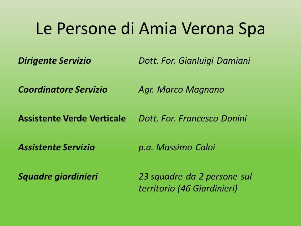 Le Persone di Amia Verona Spa