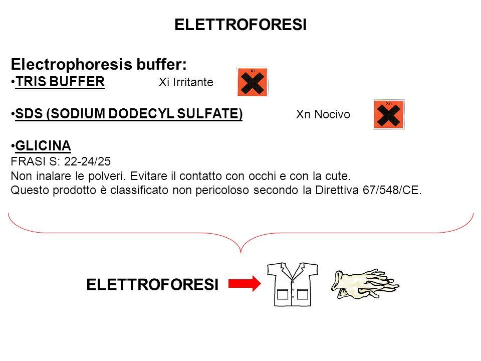 ELETTROFORESI ELETTROFORESI