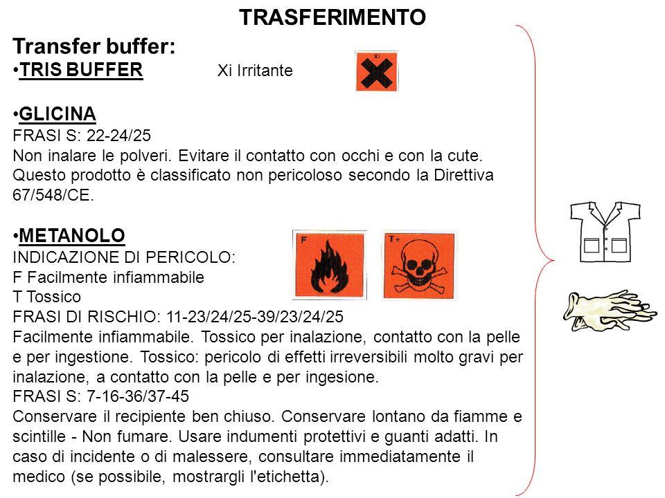 TRASFERIMENTO Transfer buffer: TRIS BUFFER Xi Irritante GLICINA