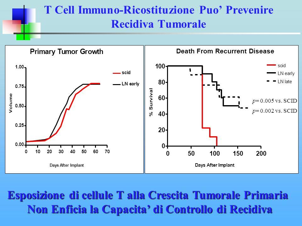 T Cell Immuno-Ricostituzione Puo' Prevenire Recidiva Tumorale