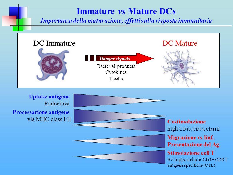 Immature vs Mature DCs Importanza della maturazione, effetti sulla risposta immunitaria