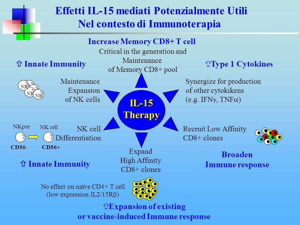Effetti IL-15 mediati Potenzialmente Utili