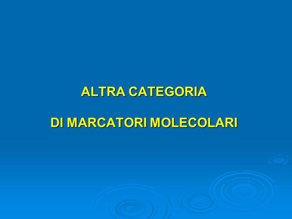 ALTRA CATEGORIA DI MARCATORI MOLECOLARI