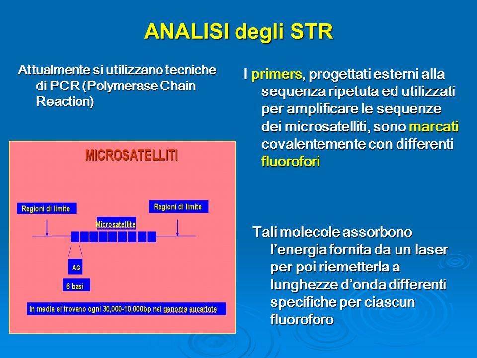 ANALISI degli STR Attualmente si utilizzano tecniche di PCR (Polymerase Chain Reaction)