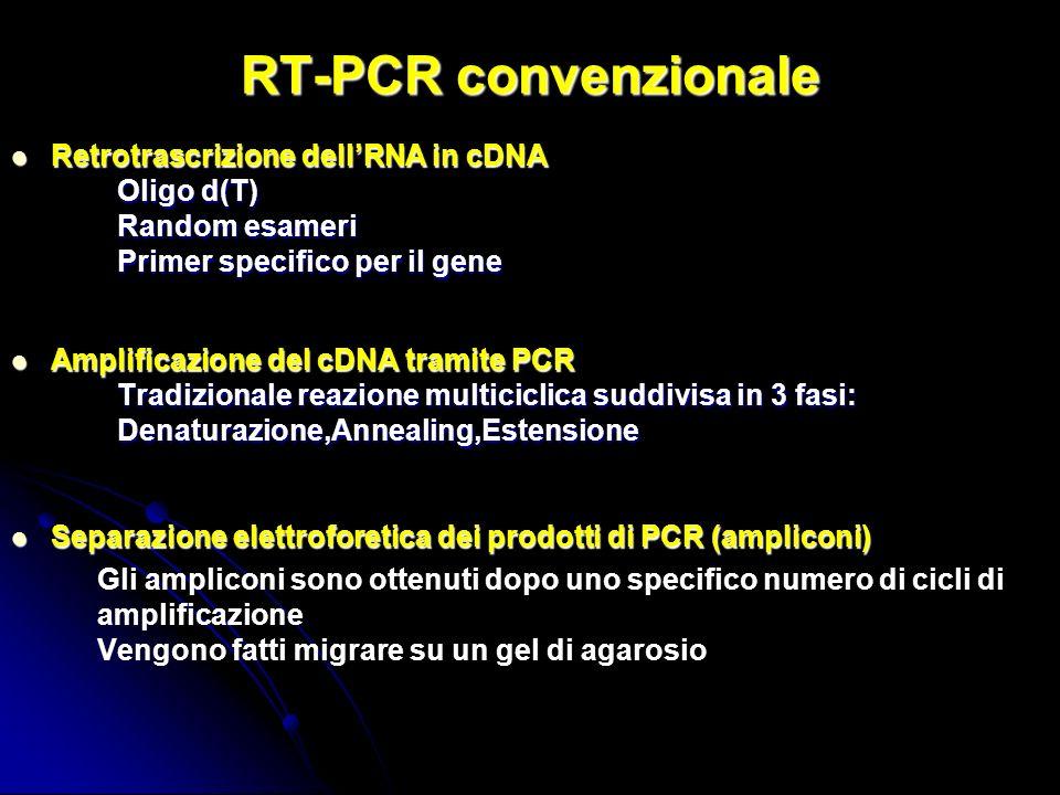 RT-PCR convenzionale Retrotrascrizione dell'RNA in cDNA Random esameri