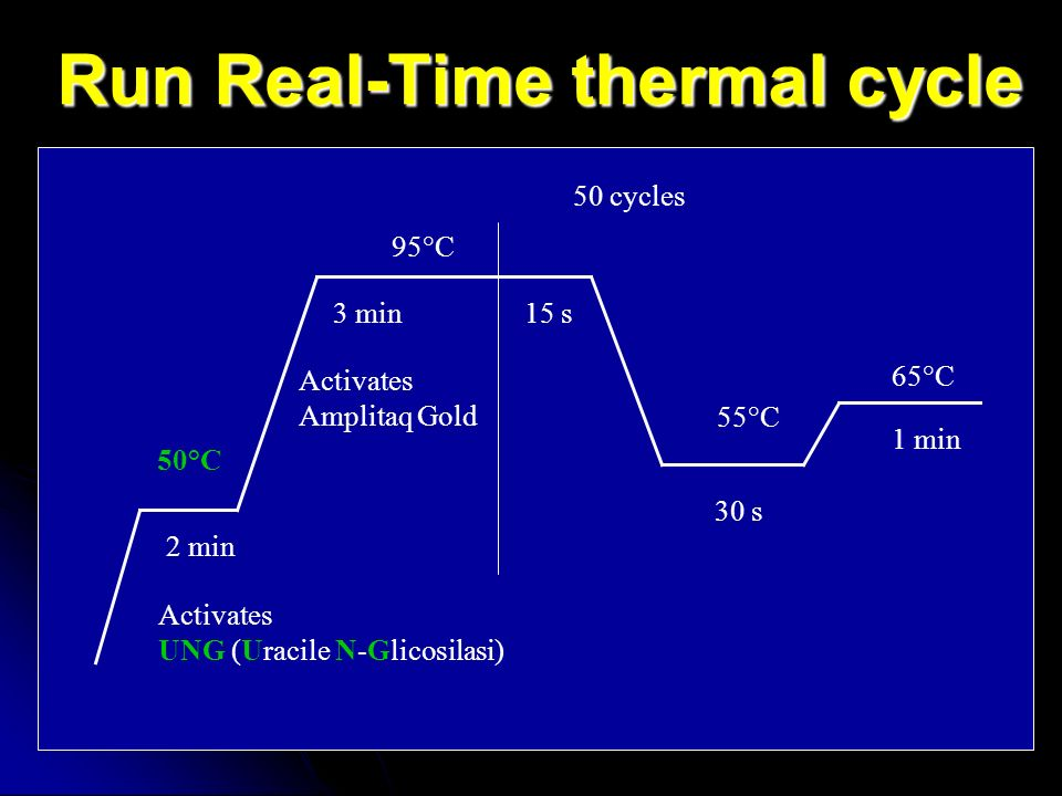Run Real-Time thermal cycle