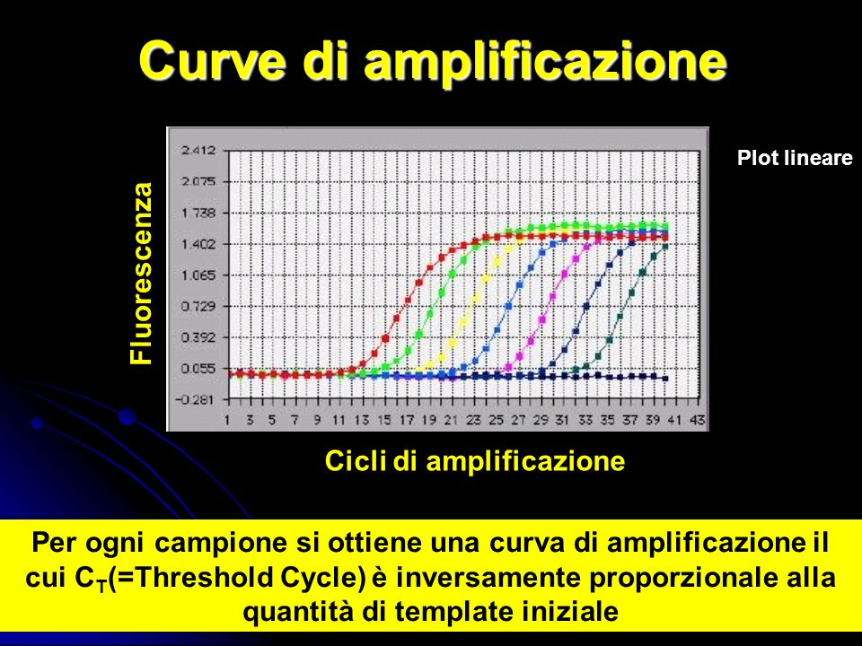 Curve di amplificazione