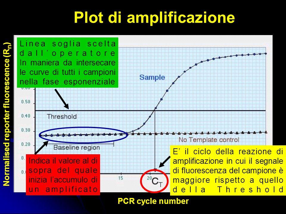Plot di amplificazione