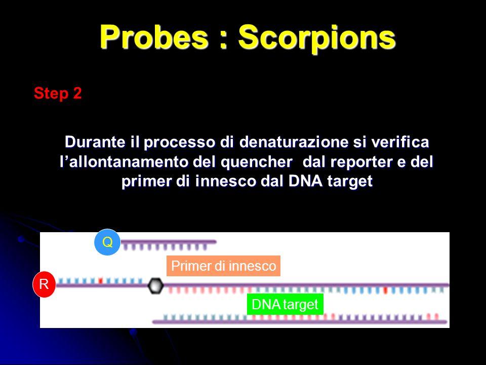 Probes : Scorpions Step 2