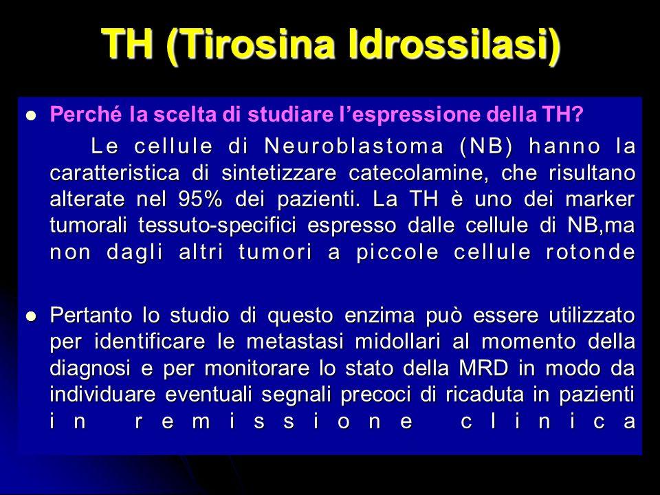TH (Tirosina Idrossilasi)