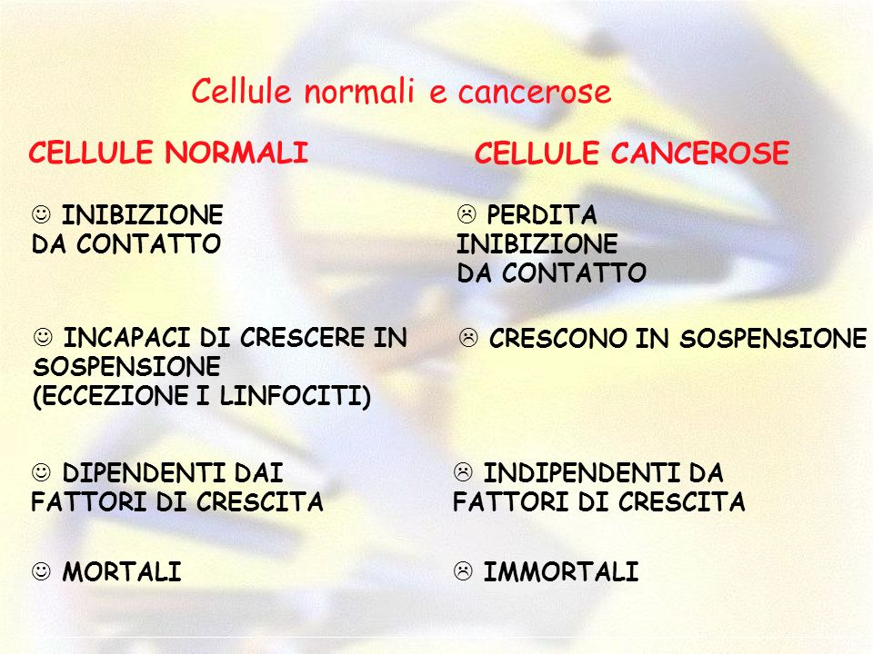 Cellule normali e cancerose