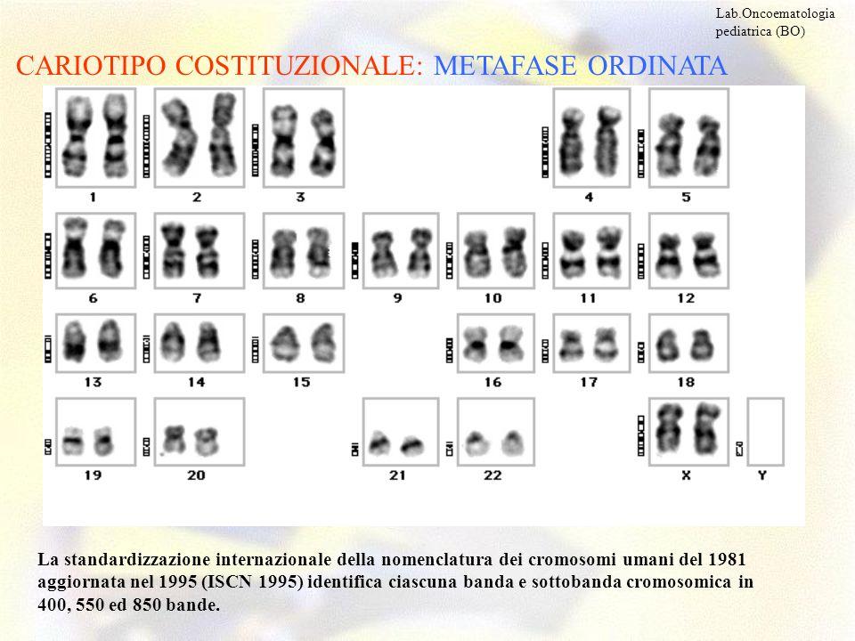 CARIOTIPO COSTITUZIONALE: METAFASE ORDINATA