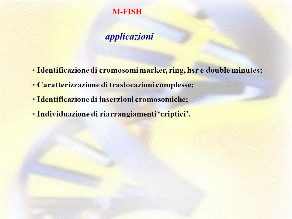 M-FISH applicazioni. • Identificazione di cromosomi marker, ring, hsr e double minutes; • Caratterizzazione di traslocazioni complesse;