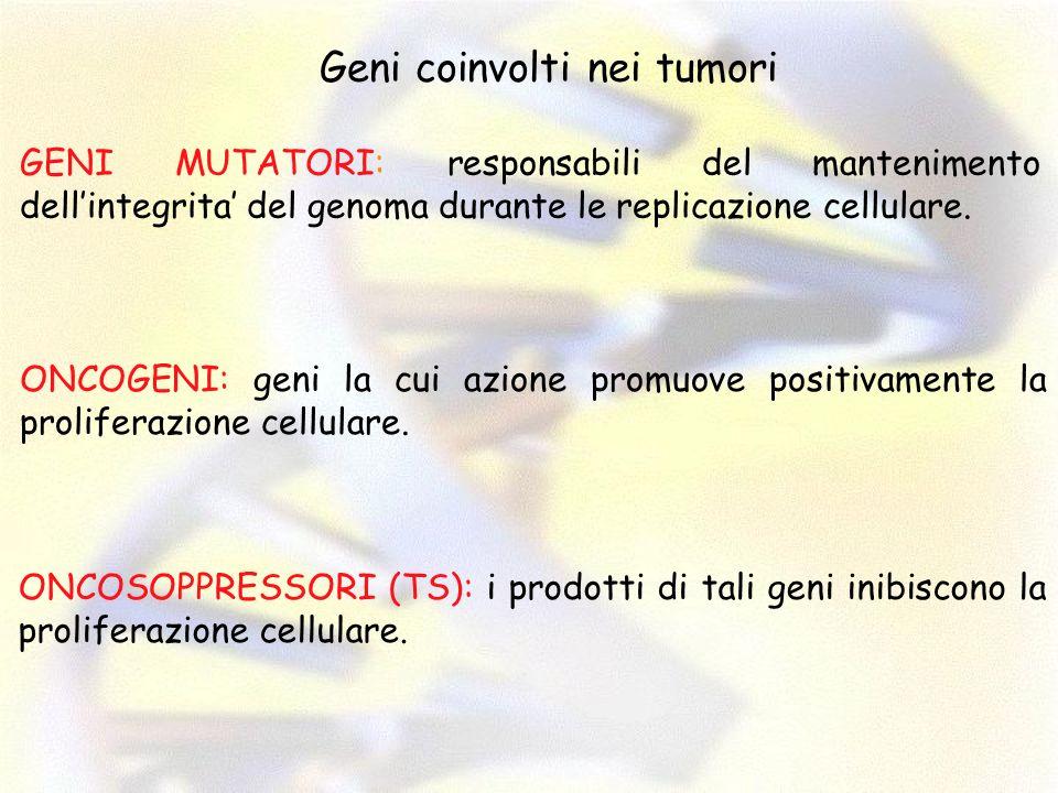 Geni coinvolti nei tumori