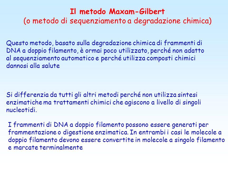 Il metodo Maxam-Gilbert