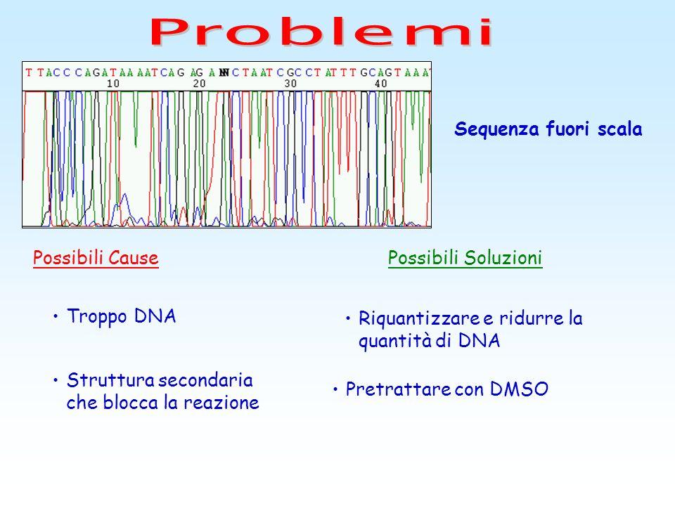 Problemi Sequenza fuori scala Possibili Cause Possibili Soluzioni
