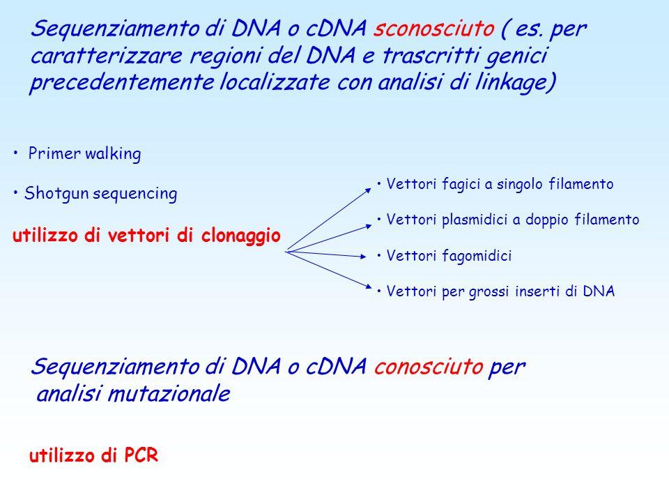 Sequenziamento di DNA o cDNA conosciuto per analisi mutazionale