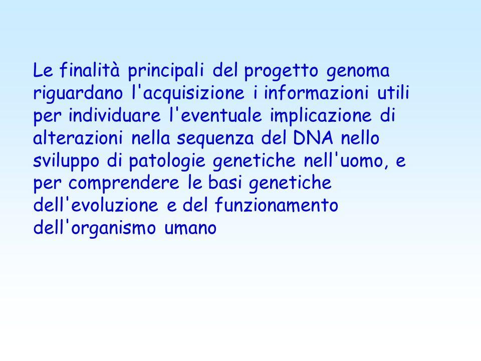 Le finalità principali del progetto genoma riguardano l acquisizione i informazioni utili per individuare l eventuale implicazione di alterazioni nella sequenza del DNA nello sviluppo di patologie genetiche nell uomo, e per comprendere le basi genetiche dell evoluzione e del funzionamento dell organismo umano