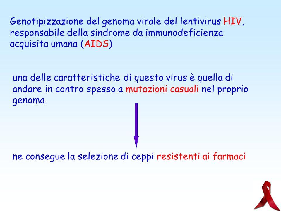 Genotipizzazione del genoma virale del lentivirus HIV,