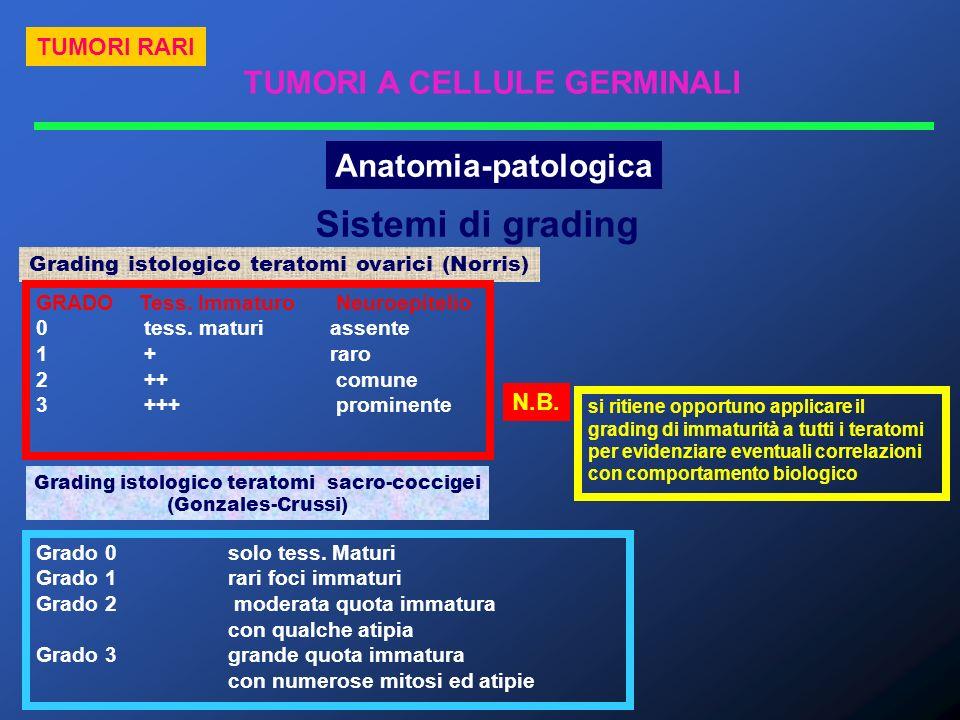 Sistemi di grading TUMORI A CELLULE GERMINALI Anatomia-patologica