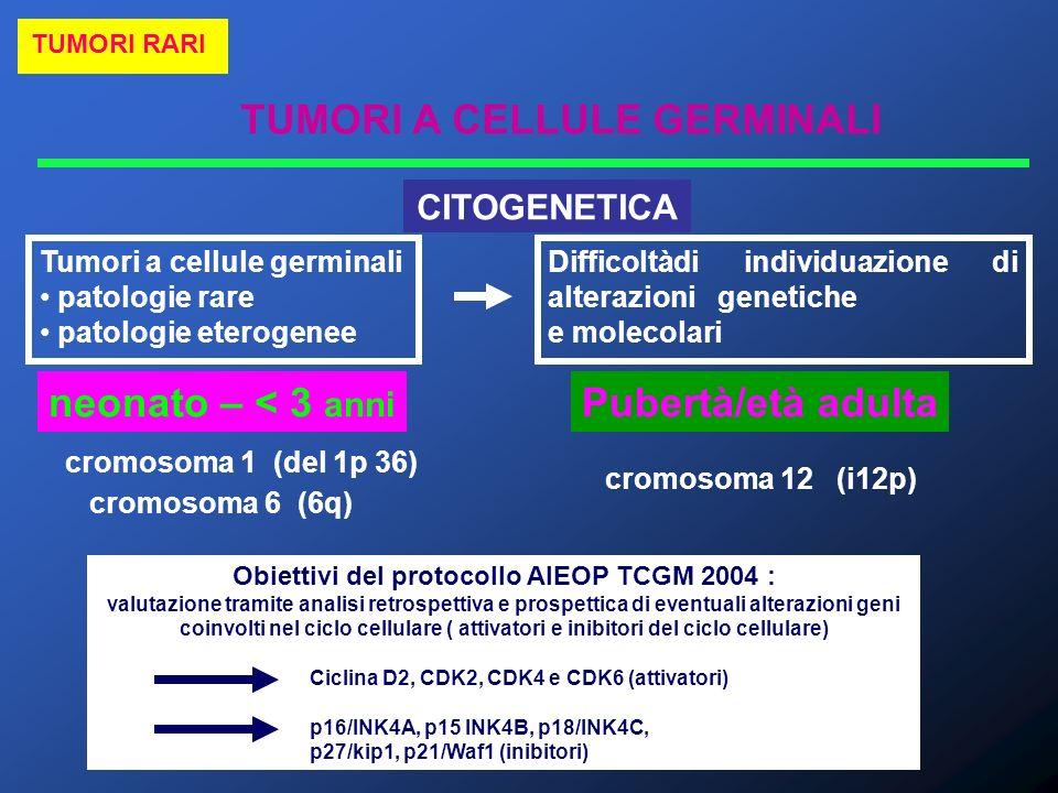 Obiettivi del protocollo AIEOP TCGM 2004 :