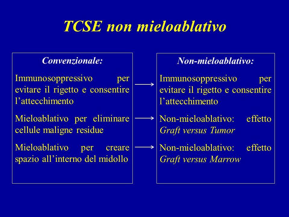TCSE non mieloablativo