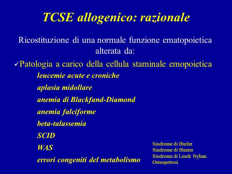 TCSE allogenico: razionale
