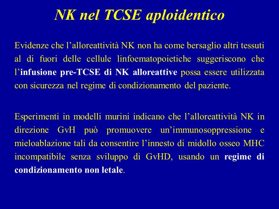NK nel TCSE aploidentico
