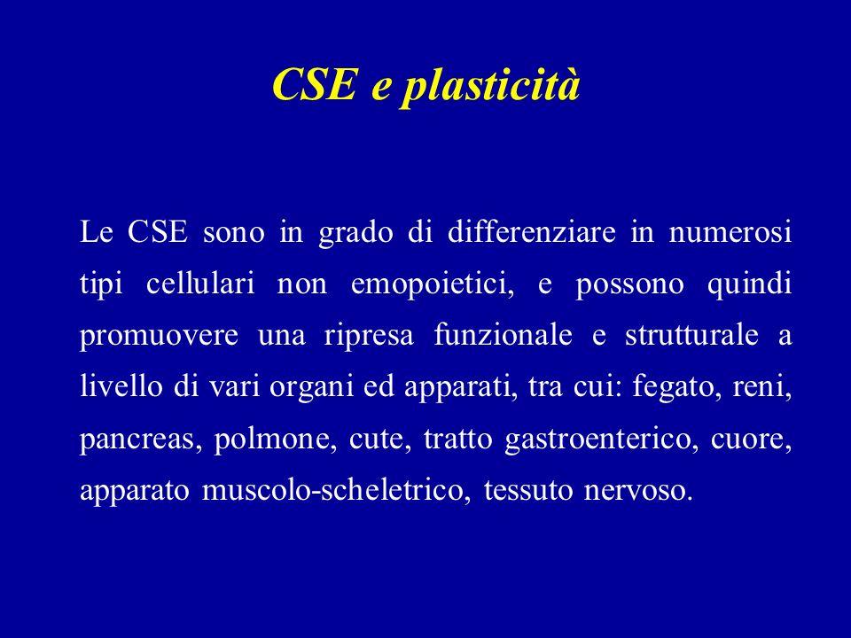 CSE e plasticità