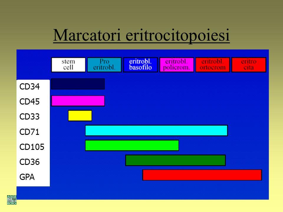 Marcatori eritrocitopoiesi