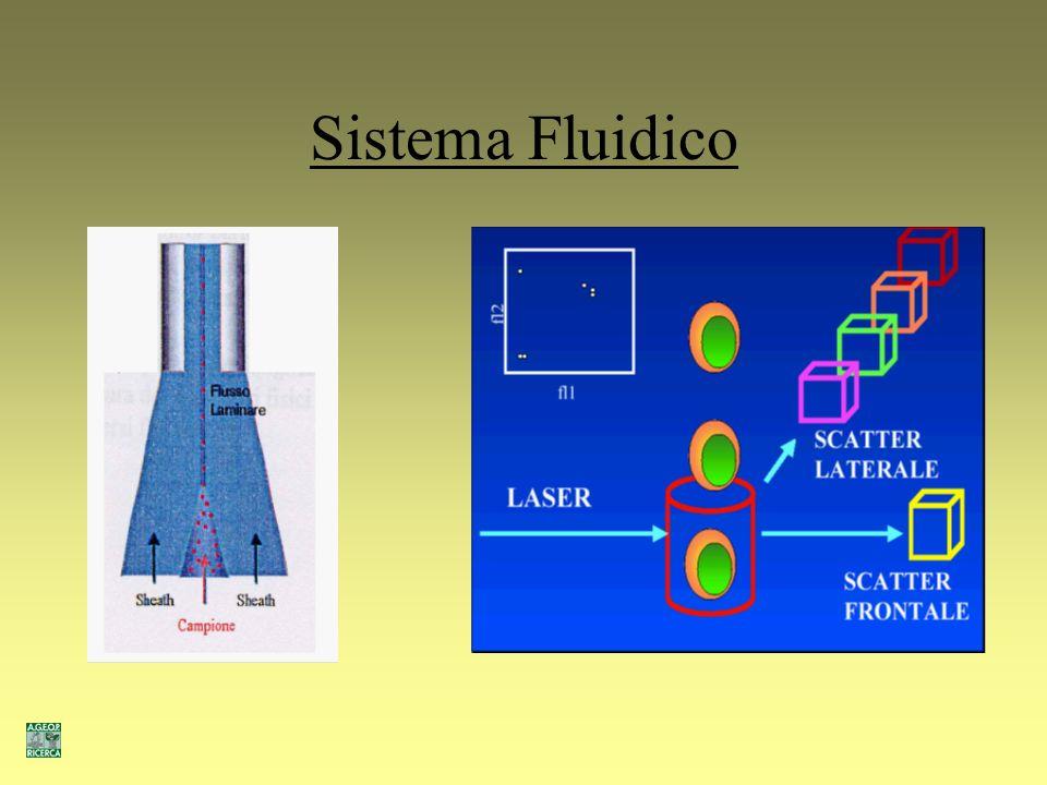Sistema Fluidico